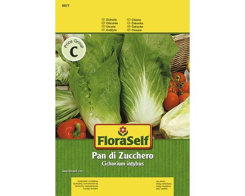 "Seminte de legume FloraSelf, cicoare ""Pan di Zuchero"""