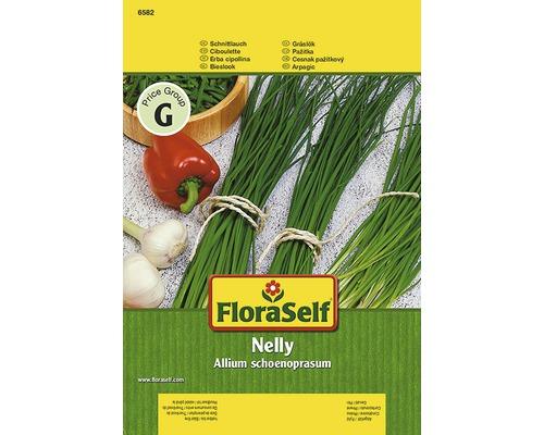 """Seminte de plante aromatice FloraSelf, arpagic """"Nelly"""""""