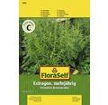 Seminte de plante aromatice FloraSelf, tarhon