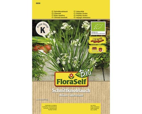 Seminte de plante aromatice FloraSelfBio, arpagic chinezesc