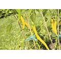 FloraSelf Tutore din bambus pentru plante, 50 cm, Ø 5 mm, 10 buc