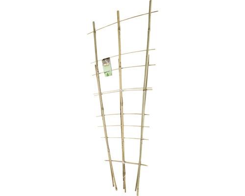 Set arcade din bambus pentru plante cataratoare FloraSelf h 60 + 85 cm 2 buc