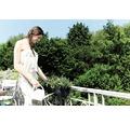 Set jardiniera elho Green Basics, plastic, 50x18x14 cm, negru, inclusiv suport