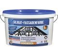 Vopsea de exterior pe baza de silicati pentru substraturi minerale alba 10 l