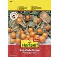 FloraSelf seminte de catina incasa