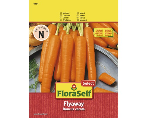 FloraSelf seminte de morcov Flyaway