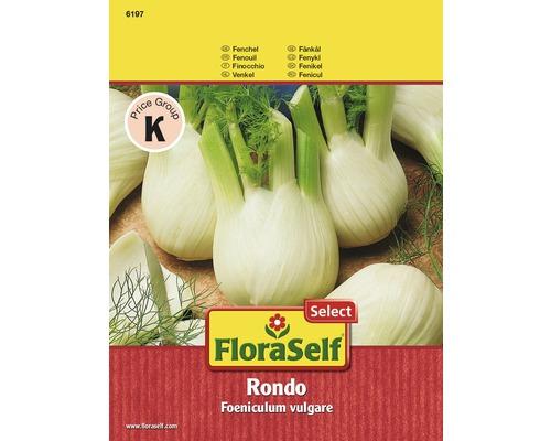 FloraSelf seminte de fenicul Rondo