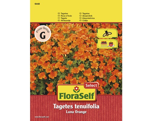 """FloraSelf seminte de craite orange Luna """"Tagetes tenuifolia"""""""