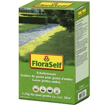 Semințe de gazon FloraSelf, gazon de umbră 1,2 kg 48 mp