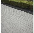 Pavaj Frunza F2 ciment 22x11x8 cm