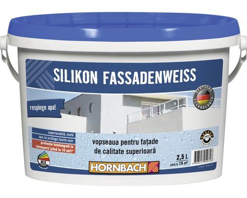 Vopsea lavabila pentru exterior pe baza de silicon, alba 2,5 l