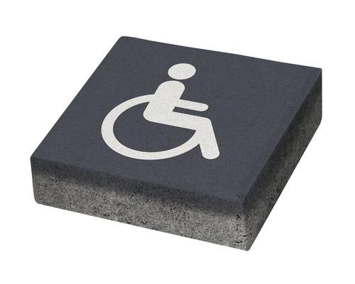 Pavaj patrat P3 acces persoane cu dizabilitati 20x20x6 cm