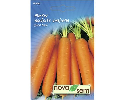 Seminte de morcov Nantes