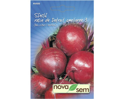 Semite de sfecla rosie