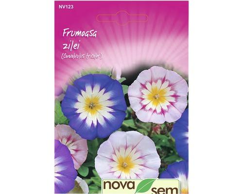 Seminte de flori Novasem Frumoasa zilei