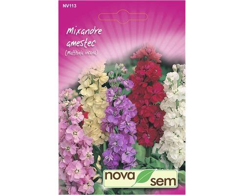 Seminte de flori Mixandre