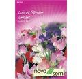 Seminte de flori Novasem Lathyrus Spencer