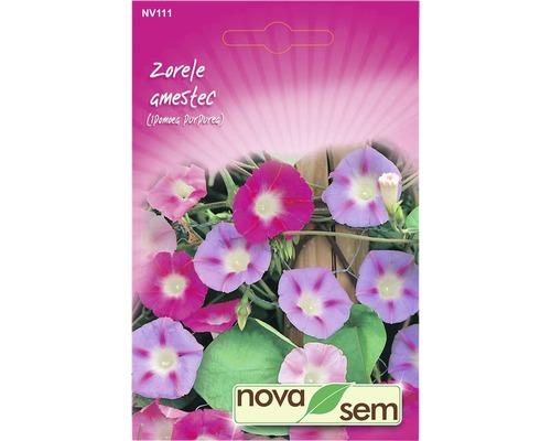 Seminte de flori Zorele
