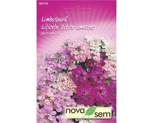 Seminte de flori Novasem Limbusoar