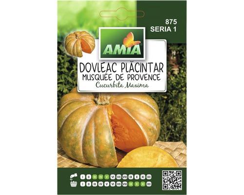 Seminte de dovleac placintar Provence