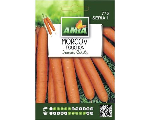 Seminte de morcov Touchon