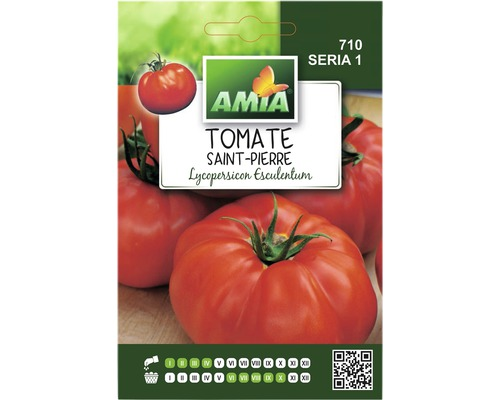 Seminte de tomate Saint-Pierre