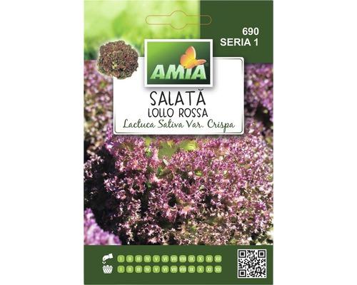 Seminte de salata Amia Lollo Rossa