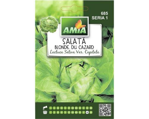 Seminte de salata blonde