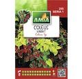Seminte de flori Amia Coleus