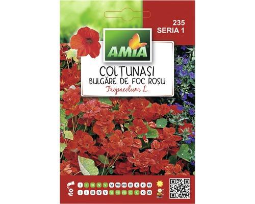 Seminte de flori Coltunasi rosii