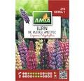 Seminte de flori Lupin hibrid