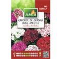 Seminte de flori Garofite gradina