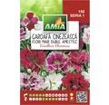 Seminte de flori Garoafe chinezesti