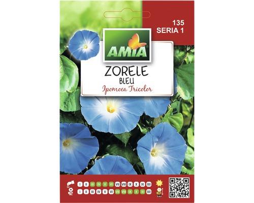 Seminte de flori Zorele albastre