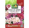 Seminte de flori Amia Azalee