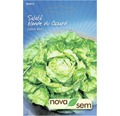 Seminte de salata du Cazard