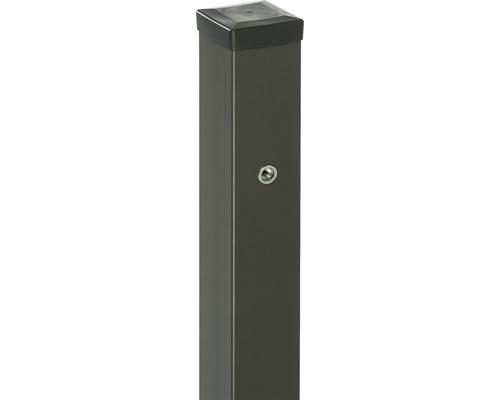 Stalp poarta Tulisa cu balamale 200x10x10 cm