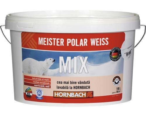 Vopsea lavabila Meister Polar Weiss baza B in nuanta dorita 10 l