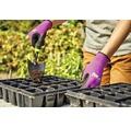 for_q Sapaliga plante cu maner din plastic