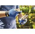 for_q Mănuși de grădină gardening, măr. XL, albastru