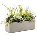 Jardiniera Lafiora cu sistem de irigatie, 60x19,5x20 cm, gri