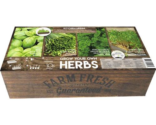 Seminte de ierburi aromatice farm Fresh cutie XL