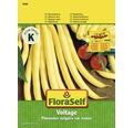 Fasole, seminte de legume FloraSelf 'Voltage'