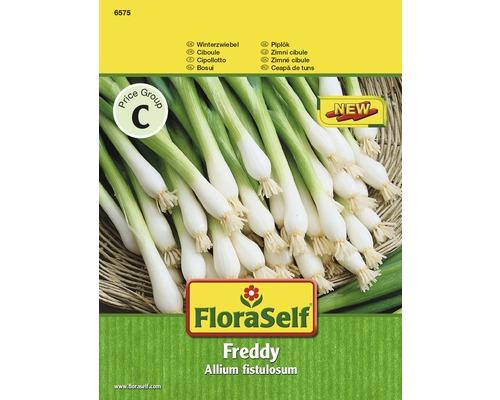 Ceapa, seminte de legume FloraSelf 'Winterhecke'