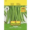 Fasole, semințe de legume FloraSelf 'Faraday'