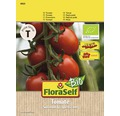 Rosii cocktail, seminte de legume FloraSelfBio 'Bolstar Baloe'