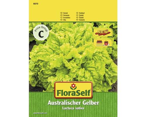 Salata creata, seminte de salata FloraSelf 'Australischer Gelber'