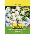 Ceapa, seminte de legume FloraSelf 'La Reine'