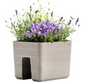 Jardiniera Lafiora cu sistem de irigare, 30x26x24 cm, gri