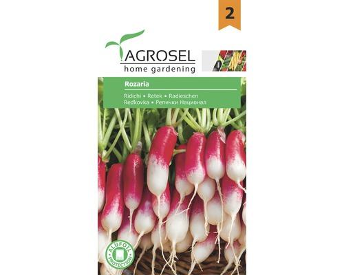 Seminte de legume, ridichi Rozaria